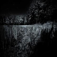 ... e noi abbatteremo il muro per vedere il mare... (UBU ♛) Tags: blue blancoynegro blackwhite noiretblanc blu blues bleu dreams blunotte blureale blupolvere ©ubu blutristezza unamusicaintesta landscapeinblues bluubu luciombreepiccolicristalli
