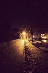 Highways (Nick JH) Tags: york city autumn trees night vintage river canal streetlights cobbles sigma1020mm