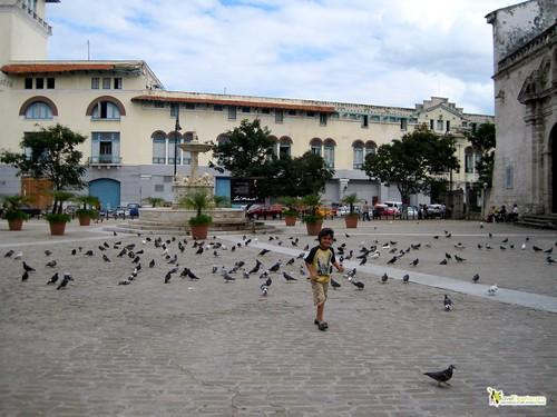 Pigeon Park - San Francisco- Havana Vieja Cuba