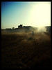 (sofiola) Tags: sun sol running run dust corriendo correr polvo