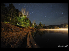 Blue Spruce Stars 2 Web (David Crombie Photography) Tags: park ontario canada night stars nikon long exposure cottage tokina algonquin 1116 d700