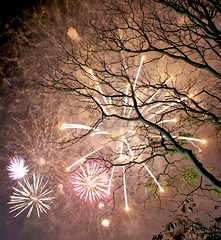 Sefton Park Liverpool, Guy Fawkes night celebrations (kev_newbold) Tags: guy night liverpool celebrations council tax courtesy fawkes payers