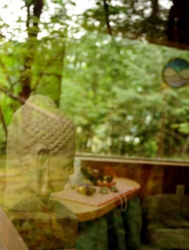 Buddha's reflection in the glass and trees, activity room, Breitenbush Hot Springs, Breitenbush, Marion County, Oregon, USA by Wonderlane