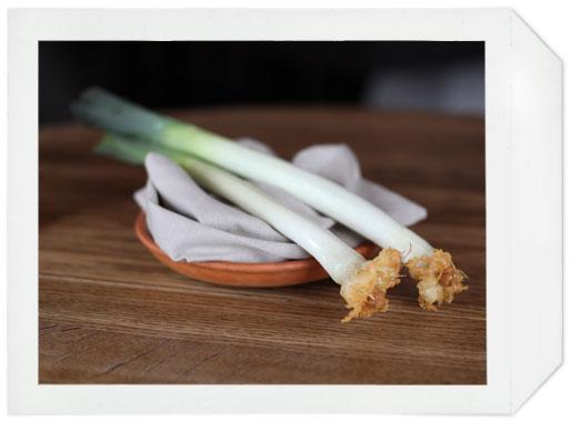 noma_leek_&_garlic