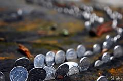 Coins at Koyasan (Bunnan's Travel Diary) Tags: japan coin photos bokeh 5 award koyasan wow1 wow2 wow3 wow4 flickraward