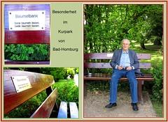 Baumelbank........ (Dieter14 u.Anjalie157) Tags: sommer urlaub digi badhomburg kurpark allerlei batelarbeiten besonderheit baummelbank