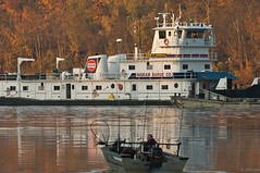 Alvin C. Johnson (Joe Schneid) Tags: boat fallcolor kentucky transportation louisville coal barge ohioriver towboat goldenlight schneid inlandwaterway inlandwaterways americanwaterways joeschneid alvincjohnson