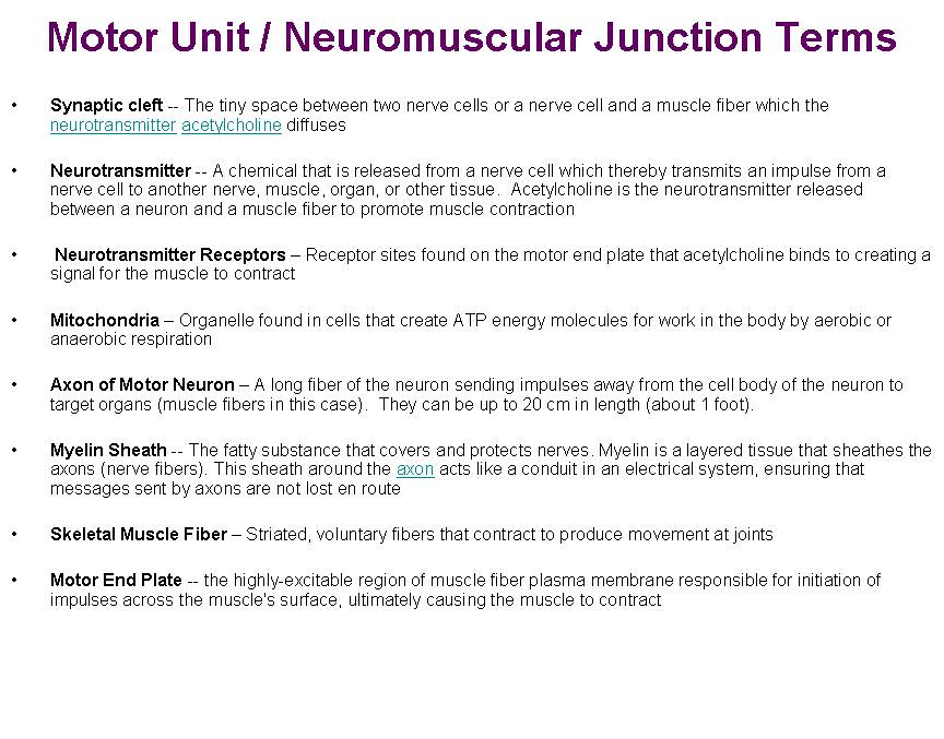Motor Unit terminology