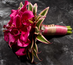 Wedding Flowers Redwood City, Hot Pink Calla Lily Bouquet (Signature Bloom) Tags: pictures pink flowers wedding decorations summer flower classic floral modern for bride design designer sanjose images designs florist vendor siliconvalley bouquet weddings bridal decor callalily peninsula southbay ideas weddingflowers bouquets redwoodcity 94065 hotpink sanjoseca 94062 florists bridalflowers redwoodcityca flowerscolors songofindia 95121 flowersforwedding sanjoseflorist hotpinkwedding signaturebloom wwwsignaturebloomcom sanjoseweddingflorist bridalflorist weddingfloristsanjose weddingflowerssanjose redwoodcityweddingflowers