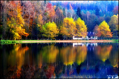 Chaud-froid d'automne (Excalibur67) Tags: autumn trees nature water forest automne landscape nikon couleurs herbst arbres alsace paysage reflexion reflets 10010 eaux d90 tangs greatphotographers vosgesdunord dragondaggerphoto dragondaggeraward forts flickrclassique magicunicornverybest magicunicornmasterpiece mygearandme mygearandmepremium mygearandmebronze mygearandmesilver mygearandmegold mygearandmeplatinum mygearandmediamond blinkagain greaterphotographers sunofgodphotographer greatestphotographers ultimatephotographers aboveandbeyondlevel1 aboveandbeyondlevel2 aboveandbeyondlevel3 rememberthatmomentlevel4 rememberthatmomentlevel1 rememberthatmomentlevel2 rememberthatmomentlevel3 rememberthatmomentlevel7 rememberthatmomentlevel9 rememberthatmomentlevel5 rememberthatmomentlevel6 rememberthatmomentlevel8 rememberthatmomentlevel10