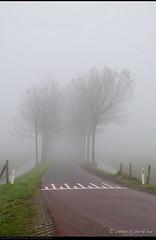Cross the line and you get lost... (Peterbijkerk.eu Photography) Tags: mist fog nederland noordholland koud oudendijk nld peterbijkerkeu