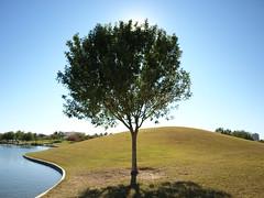 ...a day at the park.... (Ms. Phoenix) Tags: arizona phoenix 602 valleyofthesun