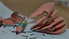 ذاكر ذاكر حتى يقصر قلمك و يتآكل (وهج الشمس Glare of Sun) Tags: school pencil notebook numbers math دفتر مدرسة قلم بري رياضيات مذاكرة