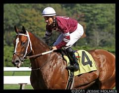 Tapizar and Corey (Spruceton Spook) Tags: horseracing belmontpark coreynakatani tapizar