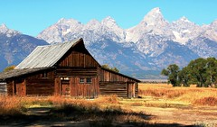 T.A. Moulton Barn (lhboudreau) Tags: park mountain mountains barn jackson valley mormon wyoming grandtetons range grandteton homesteads grandtetonnationalpark mormonrow moultonbarn thomasalmamoulton tamoulton