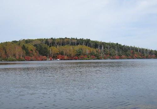 白駒池の紅葉 2011年10月11日1157 by Poran111