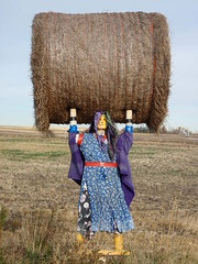 Super Strong ... (Mr. Happy Face - Peace :)) Tags: alberta canada landscape beauty strong women farming hay colorful farmgirl blue dress lifting artiswoman artisawoman art2017 albeertabound cans2s ourcanada150