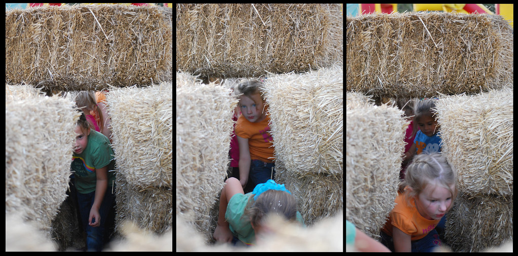 3 in the hay