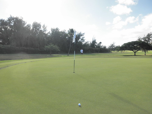 Turtle Bay Colf Course 073