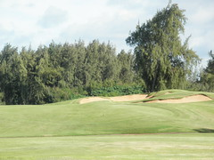 Turtle Bay Colf Course 333
