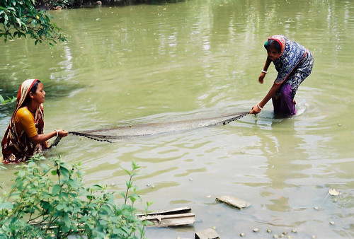 Women in fisheries, Bangladesh. Photo by CBFM-Fem Com Bangladesh, 2006