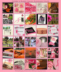 Susan G. Komen CEO~Too Much Pink Is Never Enough (Baking is my Zen) Tags: hope fundraising breastcancer breastcancerawareness cancersurvivor pinkribbon melissaetheridge pinkrose pinkforoctober octoberisbreastcancerawarenessmonth passionatelypinkforthecure susangkomenforthecure irunforlife carmenortiz canonrebelt1i bakingismyzen getyourpinkon getyourpinkonwithbakingismyzen october2011isbreastcancerawarenessmonth nancybrinkerfounder