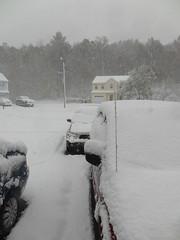 October snow (5)