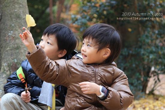 20101207_KyotoWithMoFei_1293 f