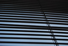 (Laura .~) Tags: window persian blind louvre shade louver sunblind