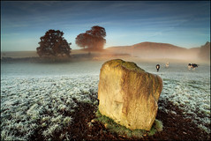 Standing Stone @ Staredam (angus clyne) Tags: old blue autumn winter light red mist mountain lake west tree fall grave field grass stone standing forest sunrise lens prime dawn scotland frost cows angle time angus hill north wide perthshire scottish glen east filter valley lee nd grad megalith clyne watm idream colorphotoaward canon5dmarkii aboveandbeyondlevel1 ihatecows