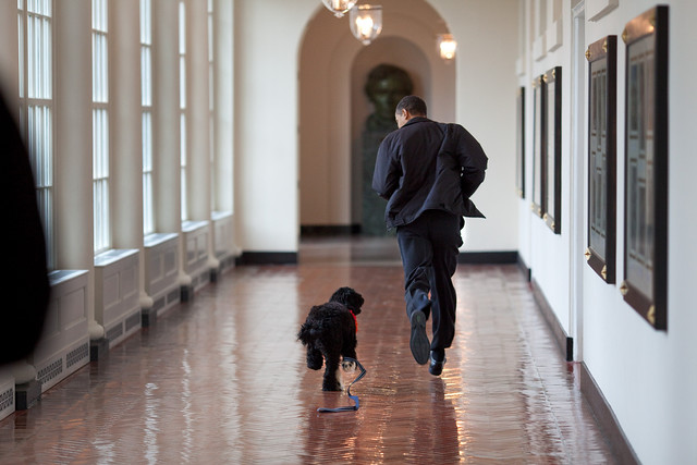 President Barack Obama runs down the East Colonnade