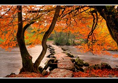 Autumn at Tarr Steps (Tim Barker - in North Devon) Tags: autumn southwest nikon devon filter lee nd westcountry northdevon leend ndfilter tarrsteps ndgrad leefilters timbarker d7k autmuncolours d7000