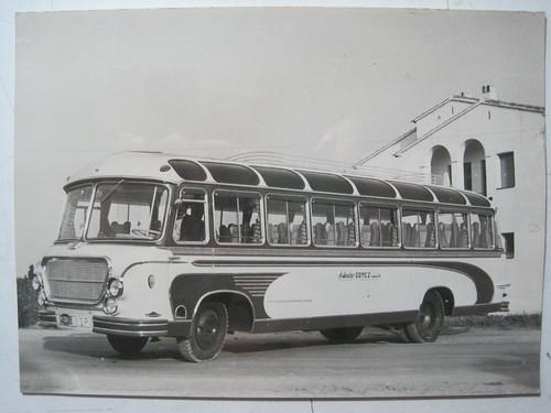 IMG_1904