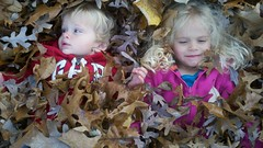 Everett And Violet In The Leaves (Joe Shlabotnik) Tags: cameraphone autumn fall leaves violet everett faved 2011 november2011 twoviewsonefave droid2