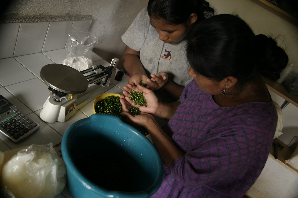 Femmes preparation