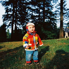 AR06950_AR06950-R1-E001 (Alicia J. Rose) Tags: familyportraits forestpark falltrees cutetoddler aliciajrose bigforest tinylumberjack