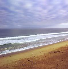 Seaside Beach: First Light - III. ~ Central Coast,CA (Wolverine09J ~ 1 Million + Views) Tags: nature pacificocean environment oceanvistas bsquare ilikenature theperfectpicture seasidebeach montereybayca beachscapes naturesbeauties douledragonawards keepyoureyesopenayezloeil thebestofbeautifulearth anaturecanvasnothingmanmade beautifulearthnopeople level1allnaturesparadise soulophotographylevel1 seaviewallwaterpix californiacentralcoastoct2011