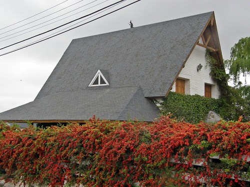 casa con crataegus