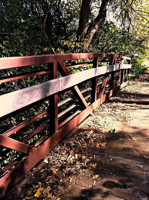 Bridge at the butterfly garden