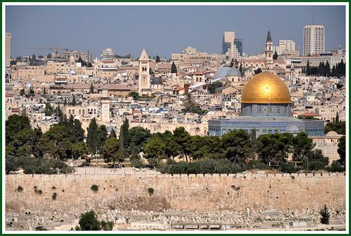 Gerusalemme. La Cupola della Roccia sul Monte del Tempio.