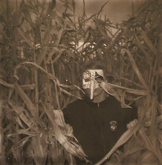 (my manic & I) Tags: halloween field movie square polaroid corn poughkeepsie horror tapes