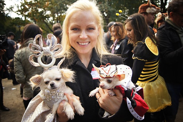 King and Queen, Halloween Dog Parade 2011, Tompkins Square Park, East Village, New York City