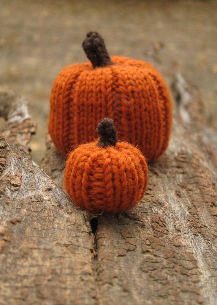 Wee knit Pumpkin Pattern - Cheeky Attitude