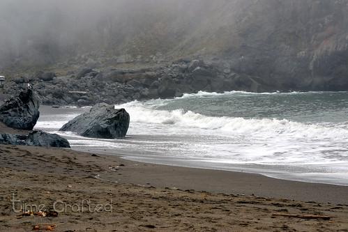 Goat Rock Beach