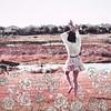 Silk Sofia Scarf (Sofia Ajram) Tags: roses illustration scarf etsy dustyrose 100silk sofiaajram oliviamew