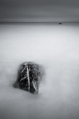 reveal (Nate Parker Photography) Tags: ocean longexposure sea blackandwhite seascape monochrome rock mono sand rocks minimal le haveaniceday bw110