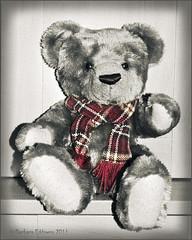 27/31 Tartan Bear (belincs) Tags: uk europe teddy lincolnshire selectivecolour colourpop october2011 nikond5000 pse9 barbaraeddowes
