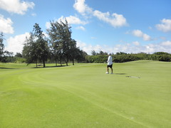 Turtle Bay Colf Course 283