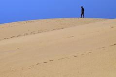 Chapter 7 - Corralejo, the unbereable lightness of the desert (#9): Disorienteering (stedef) Tags: spain sand niceshot desert fuerteventura dune canaryislands spagna deserto sabbia corralejo canarie olétusfotos mygearandme playasgrandes