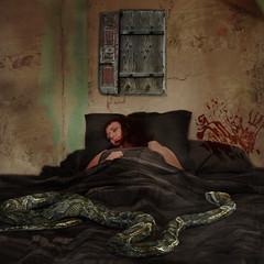 Quiet Horrors. (Faerie Girl) Tags: me photoshop blood bed snake dreaming textures dreams horror squarecrop nightmares theteleidoscope mostofmybaddreamslatelyhavehadstuffaboutdeadanimalsinthemorpeopleiusedtoknowormyfriendbeingmadatmebutitwasntreallymyfrienditwasagrosspotatobugthatbitmeonmyfinger